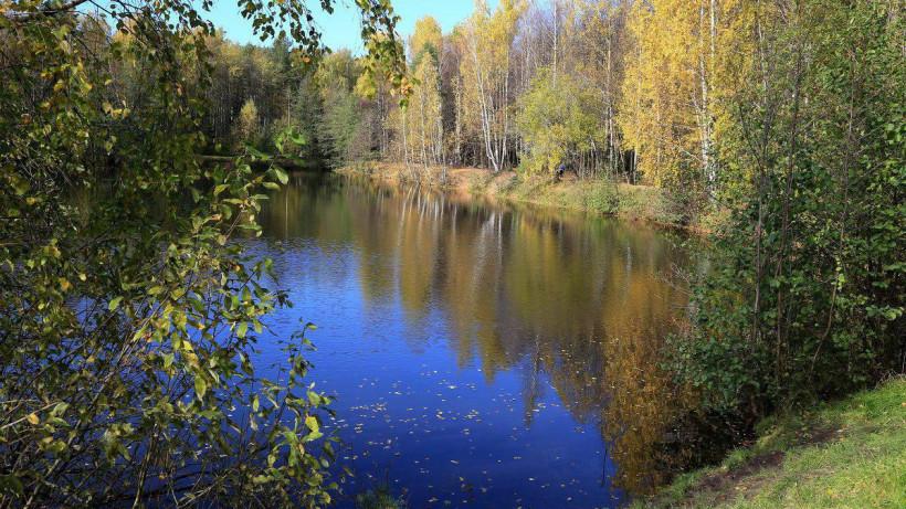 Жители Подмосковья смогут онлайн получить сведения из государственного водного реестра