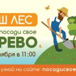 3500 спортсменов примут участие в акции «Наш лес. Посади свое дерево» в Подмосковье