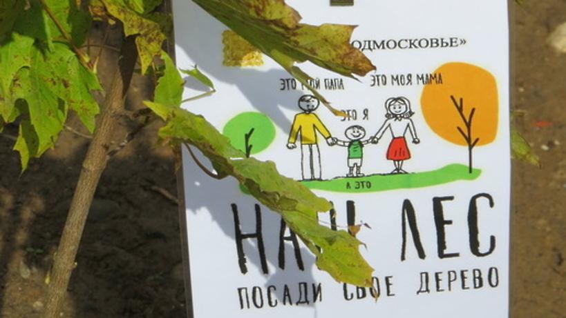 Андрей Воробьев с космонавтами посадили деревья в Звездном городке на экоакции «Наш лес»