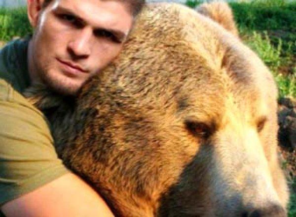 "«Бьют, сажают нацепь»: Хабиб Нурмагомедов возмутил британцев ""спаррингом"" с медведем"