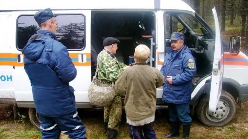 Более 1 тысячи человек вывели из лесов в Подмосковье с начала 2019 года