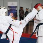 Более 200 подмосковных спортсменов примут участие в Открытых Всероссийских юношеских играх боевых искусств