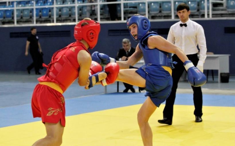 На всероссийских соревнованиях по боевым искусствам Подмосковье представят 57 спортсменов