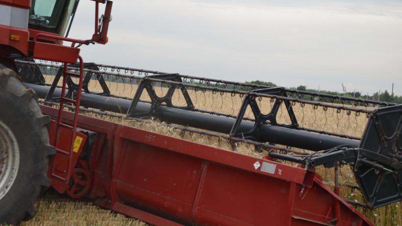 Почти 330 тысяч тонн зерновых уже намолотили в Подмосковье
