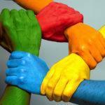 Программа «Толерантность —дорога к миру»