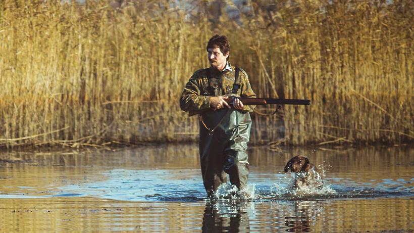 Сезон охоты на копытных животных откроется в Подмосковье 1 октября