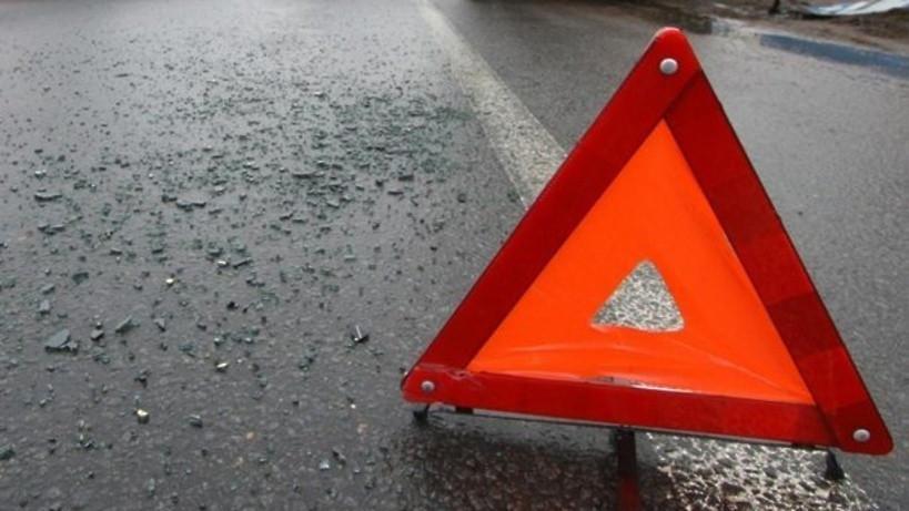 Водитель пострадал в ДТП с лосем в Пушкинском округе