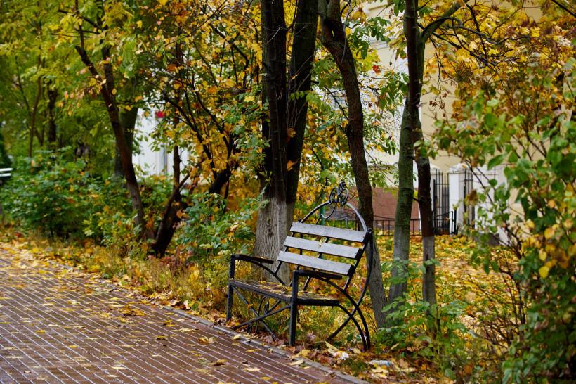 Более половины парков Подмосковья соответствуют единому рейтинговому стандарту