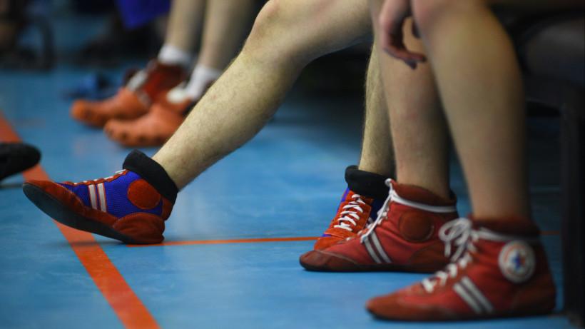 Борцы из Московской области завоевали девять медалей на Всероссийских соревнованиях