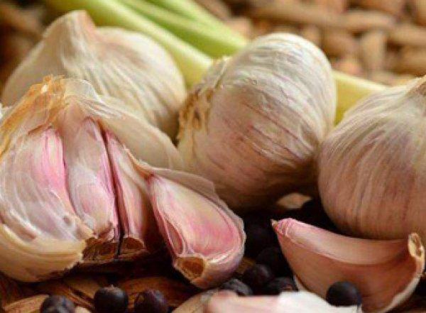 Медики рассказали о пользе чеснока для здоровья