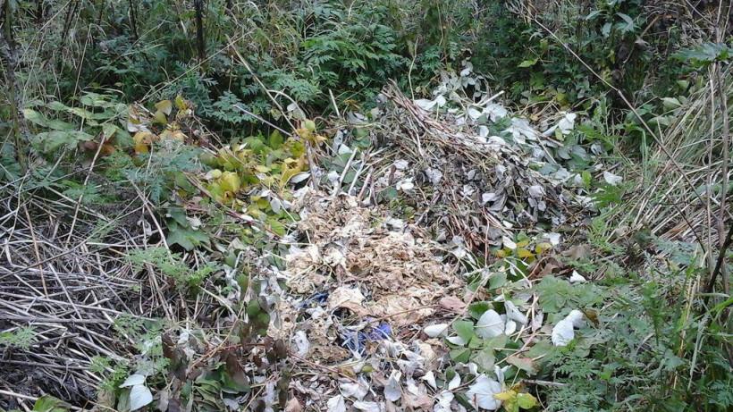 Минэкологии потребовало ликвидировать незаконную свалку в Богородском округе