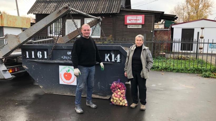 Подмосковные дачники смогут сдать лишние яблоки на переработку в октябре