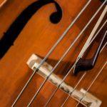 Правительство РФ одобрило законопроект Минкультуры, упрощающий временный вывоз за границу уникальных музыкальных инструментов