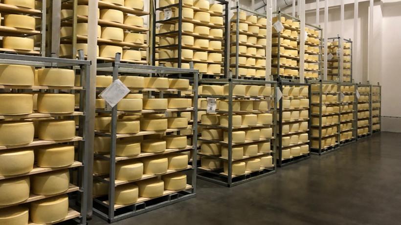 Производство сыров в Подмосковье выросло на 10,7% с начала года