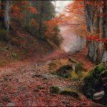 тематическая дискотека Осенний калейдоском