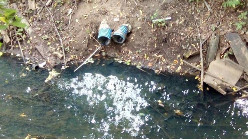 Управляющую компанию в Истре оштрафовали на 60 тыс. рублей за сброс сточных вод в водоемы
