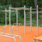 В Подмосковье построены все 5 воркаут-площадок в рамках нацпроекта «Спорт – норма жизни»