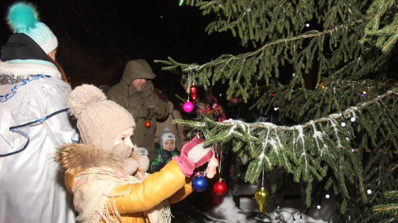 Жители Подмосковья смогут сами срубить новогодние елки в специально подготовленных местах