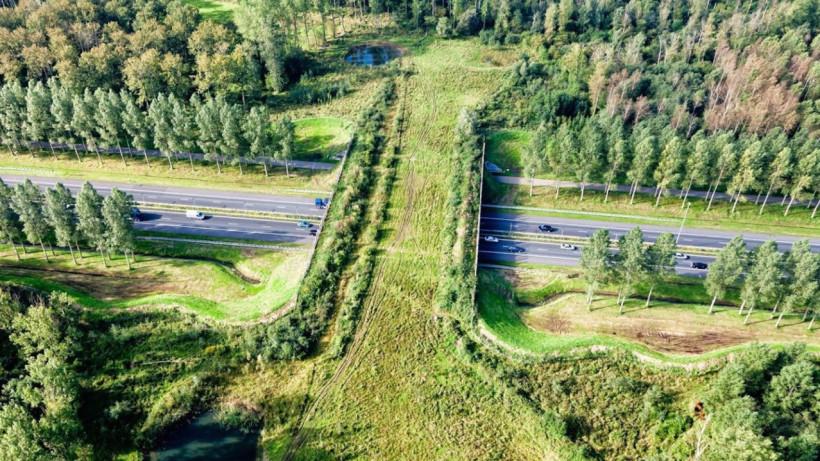 Более 100 заявок подали на Ярмарку экологических проектов