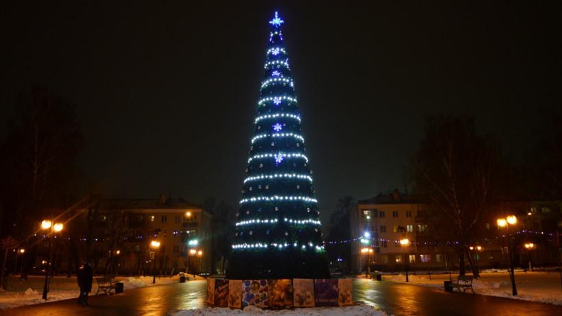 Больше 1600 елок и почти 700 катков появится этой зимой в Подмосковье