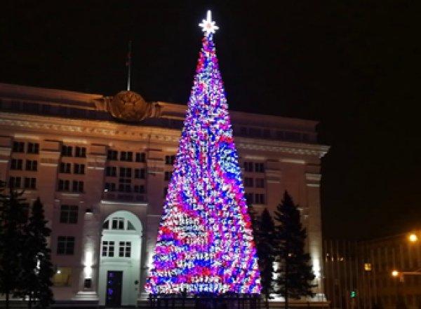 Мэр Кемерова пояснил, почему его елка в три раза дороже кремлевской