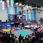 Мытищи примут финал Всероссийских студенческих Игр боевых искусств