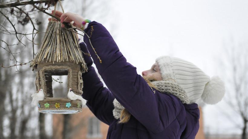 Школьники Подмосковья повесили 2 тыс. кормушек в лесах для зимующих птиц