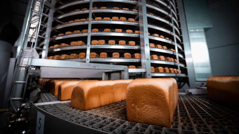 Свыше 244 тыс. тонн хлеба изготовили в Подмосковье за 9 месяцев этого года
