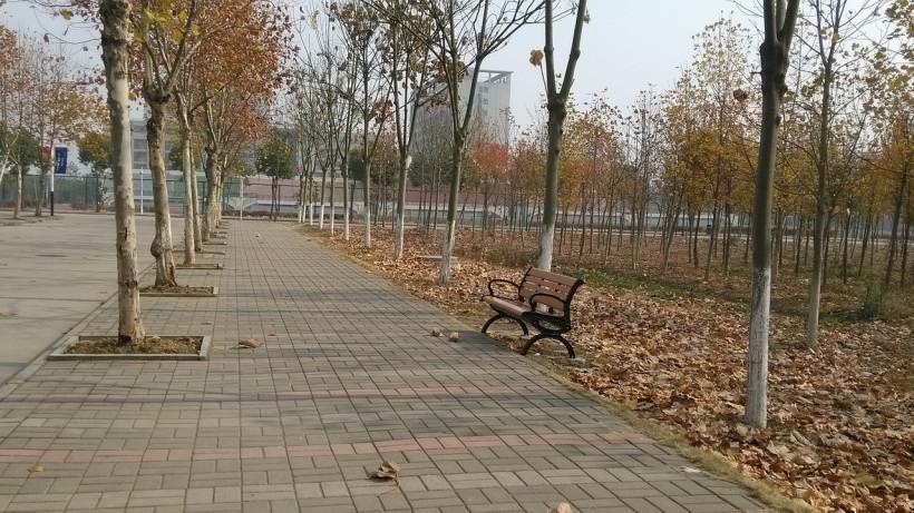 Три общественные территории благоустроили в Сергиево-Посадском округе