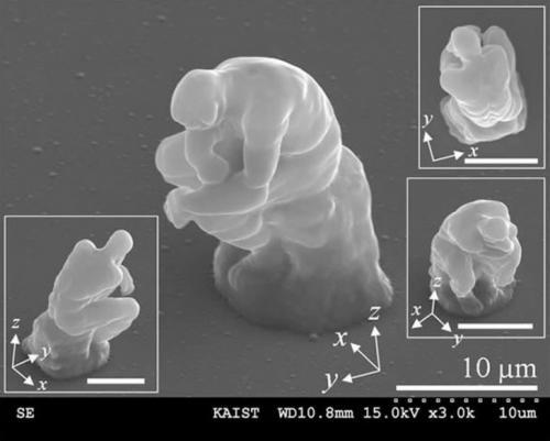 Маленький «Мыслитель» В 2007 году корейские исследователи при помощи лазеров создали микроскопическую версию знаменитой скульптуры «Мыслитель», которую Роден закончил в 1880 году. «Микро-Мыслитель» высотой 20 миллионных долей метра примерно в два раза больше эритроцита. На крошечной модели видны пальцы и даже мышцы.