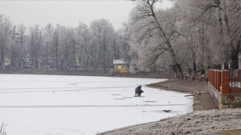 Морозная погода в Раменском