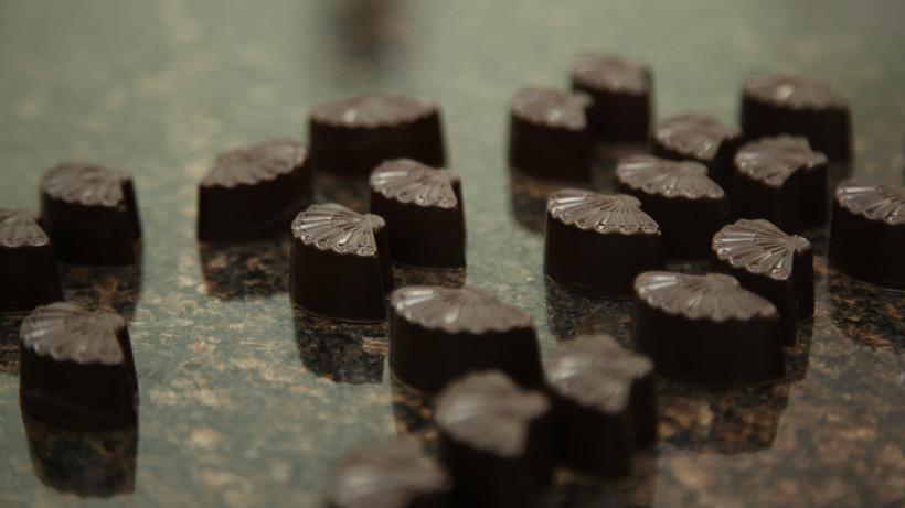 Шоколадная фабрика «ALEXANDRA Le Chocolat» в Дубне