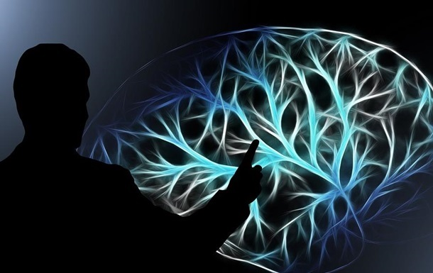 Мозг полярников уменьшился за 14 месяцев в Антарктиде