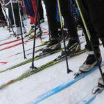 Первая трасса в Подмосковье готова принять любителей катания на лыжах