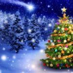 Познавательная программа «История новогодней ёлочки»