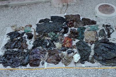В желудке мертвого кашалота нашли 100 кг мусора