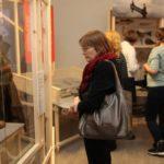 Экскурсия по выставке «Будни и праздники русского народа»