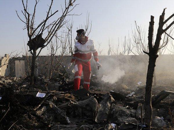 Киев назвал 7 версий крушения Boeing в небе над Ираном: Зеленский не исключил попадание ракеты