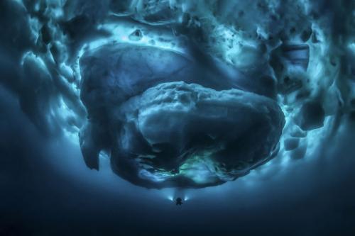 Айсберги в Гренландии. Подводная часть. Здесь и аквалангист есть для масштаба. (Фото Tobias Friedrich | Ocean Art):