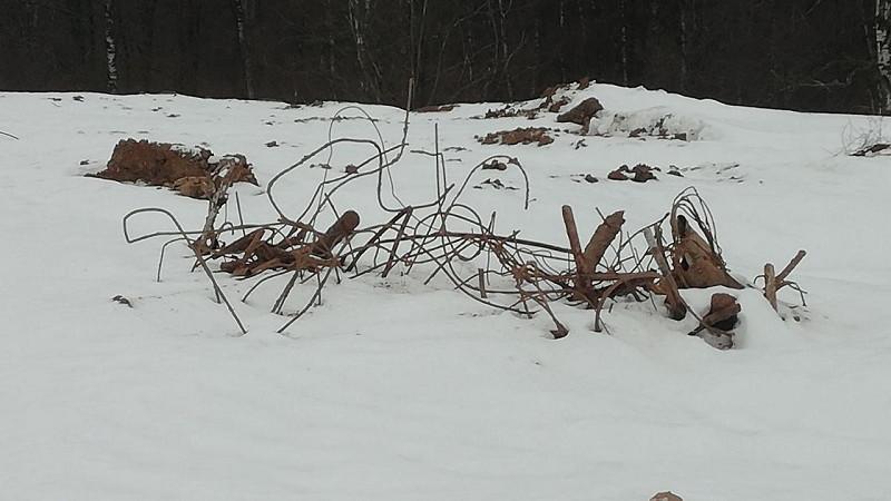 Организаторов незаконных свалок обяжут возместить ущерб почвам в Дмитровском округе