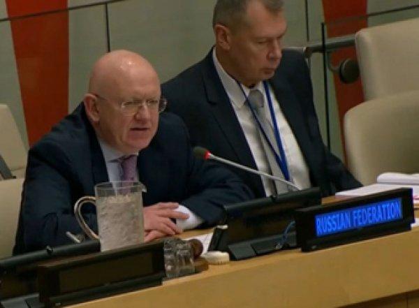 Россия представила Совбезу ООН доказательства фальсификации химатаки в сирийской Думе