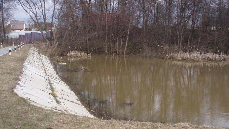 Загрязнение водосборной площади реки в Истре прекратили после вмешательства Минэкологии