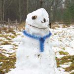 Выяснены причины теплой зимы