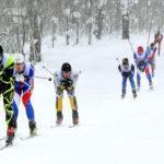 23 февраля в Подмосковье пройдет лыжная гонка «Лыжня в Лавру»