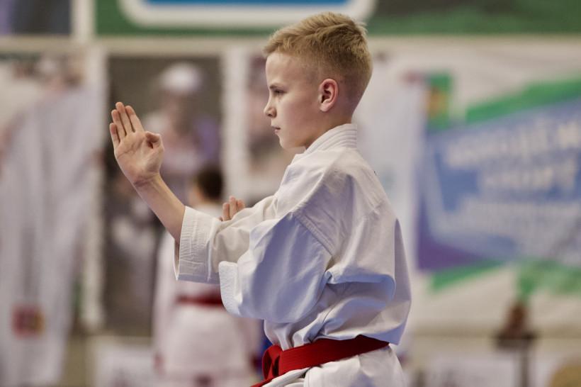 Бойцы из 15 стран мира примут участие в юбилейном «Кубке Николая Японского»