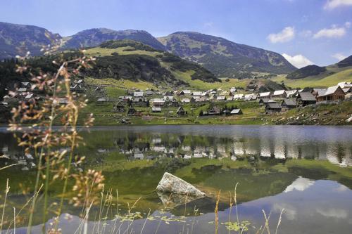 Фойница, Босния и Герцеговина Босния и Герцеговина — страна, незаслуженно обделенная вниманием российских туристов. Большинство из них приезжают на однодневную экскурсию в Мостар из Хорватии или Черногории, отдельные странники добираются до столицы страны Сараево. И мало кто знает, что Босния и Герцеговина может похвастаться лечебными курортами. В Фойницу, например, приезжают восстанавливаться после травм профессиональные спортсмены. Считается, что здешняя термальная вода очень полезна для суставов и может справиться даже с серьезными заболеваниями опорно-двигательного аппарата.