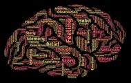 """Разработан действенный метод """"чтения мыслей"""