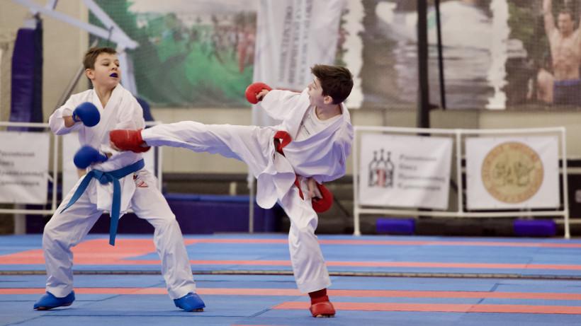 Участники X Кубка равноапостольного Николая Японского выступят в 16 видах единоборств