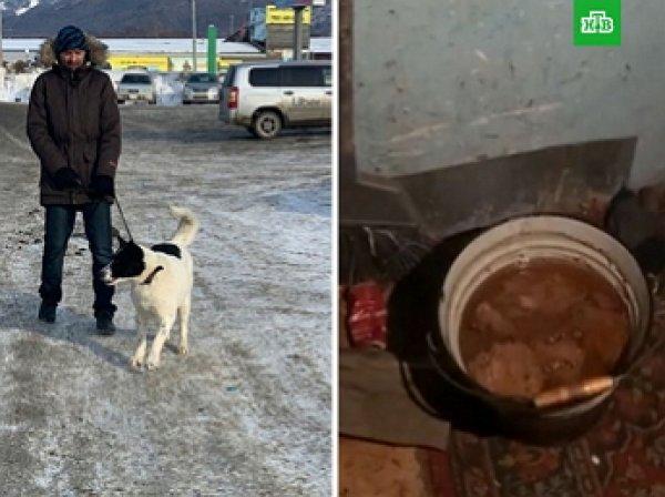 Жители Сахалина съели собаку, взятую из приюта