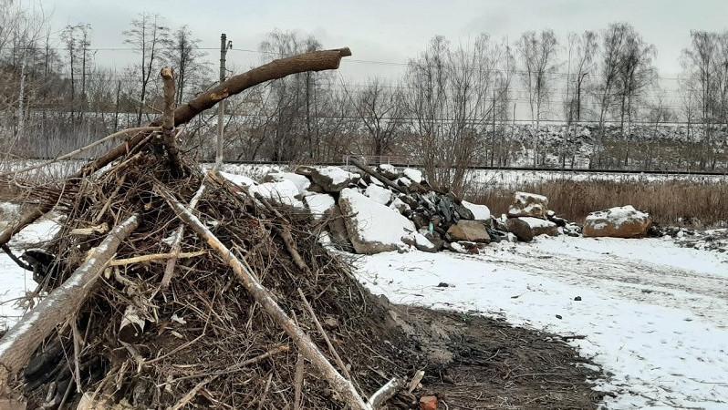 Четыре несанкционированные свалки мусора выявили в Мытищах с начала 2020 года